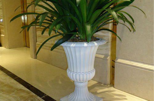 گلدان پلاستيكي بزرگ پايه دار